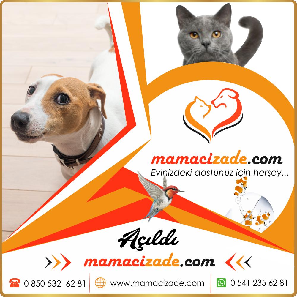 mamacizade.com sosyal medya danışmanlığı